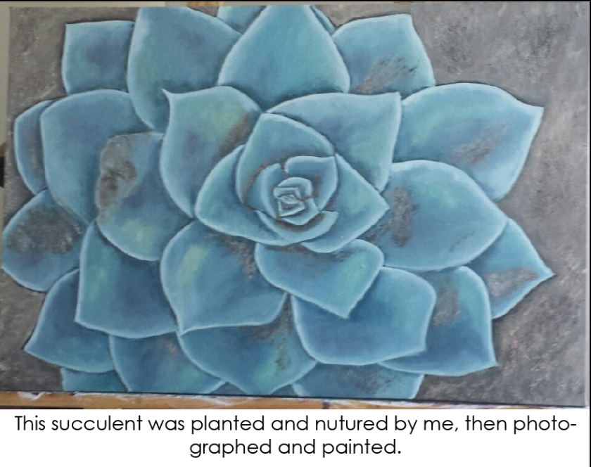 Succulent-01